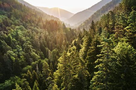MICROSOFT se reafirma en su compromiso con la sostenibilidad y avanza hacia el objetivo 'cero desechos' para 2030