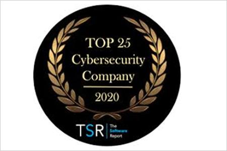 """INFOBLOX, entre las 25 mejores empresas de ciberseguridad en 2020, según """"The Software Report"""""""