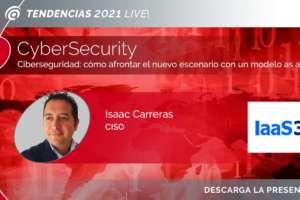 Ciberseguridad: cómo afrontar el nuevo escenario con un modelo as a Service