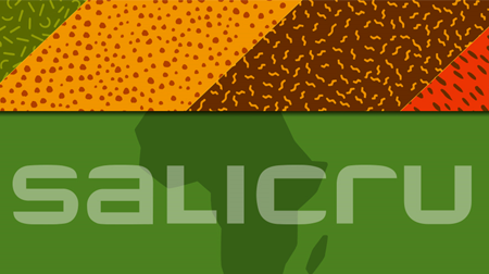 SALICRU: Creada la división Salicru África